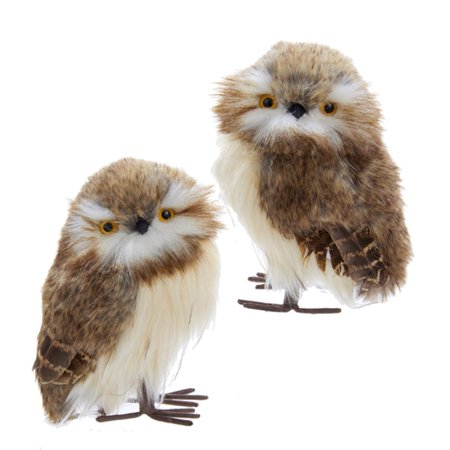 Club Pack Of 12 Woodland Brown And White Owl Christmas Ornaments 6