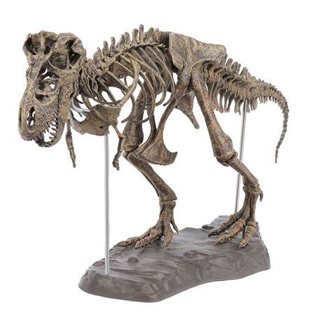 28'' PVC Tyrannosaurus Rex Skeleton Dinosaur Trex Animal Model Toy Collector - Giant T Rex