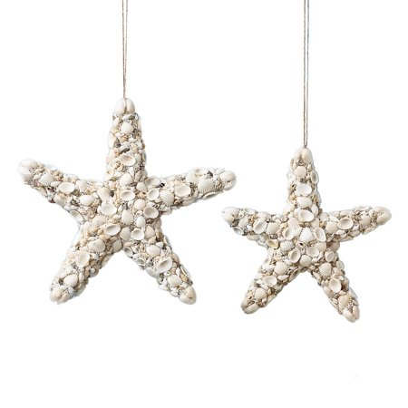 Set Of 2 Decorative Shell Starfish Hanging Beach Coastal Wall Decor