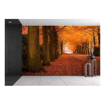 wall26 Autumn Colors in The Forest Removable Wall Mural Self Adhesive