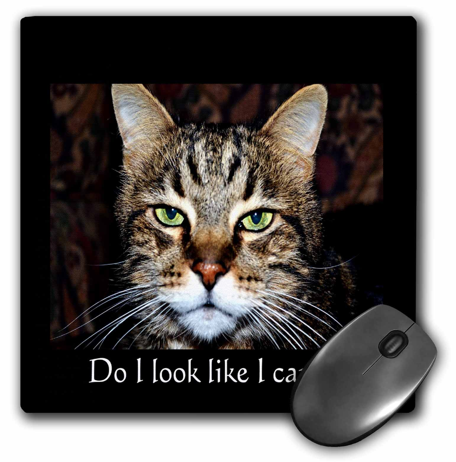 3dRose Do I look like I care A cat with expression, Mouse Pad, 8 by 8 inches