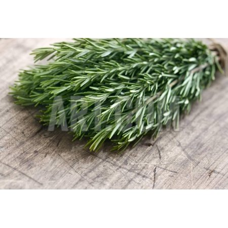 Green Fresh Rosemary Herbs Print Wall Art By Anna-Mari West