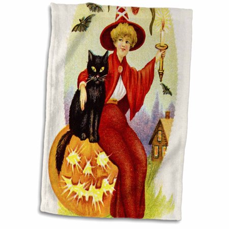 3dRose Vintage Halloween Little Witch and Her Black Cat and Pumpkin - Towel, 15 by 22-inch