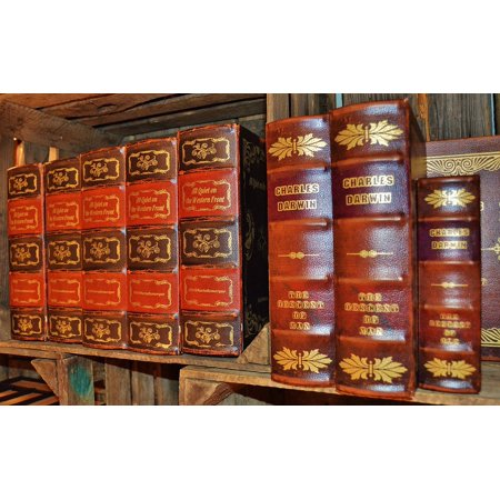 Canvas Print Box Books Spine Old Antiquariat Leather Covers Stretched Canvas 10 x 14