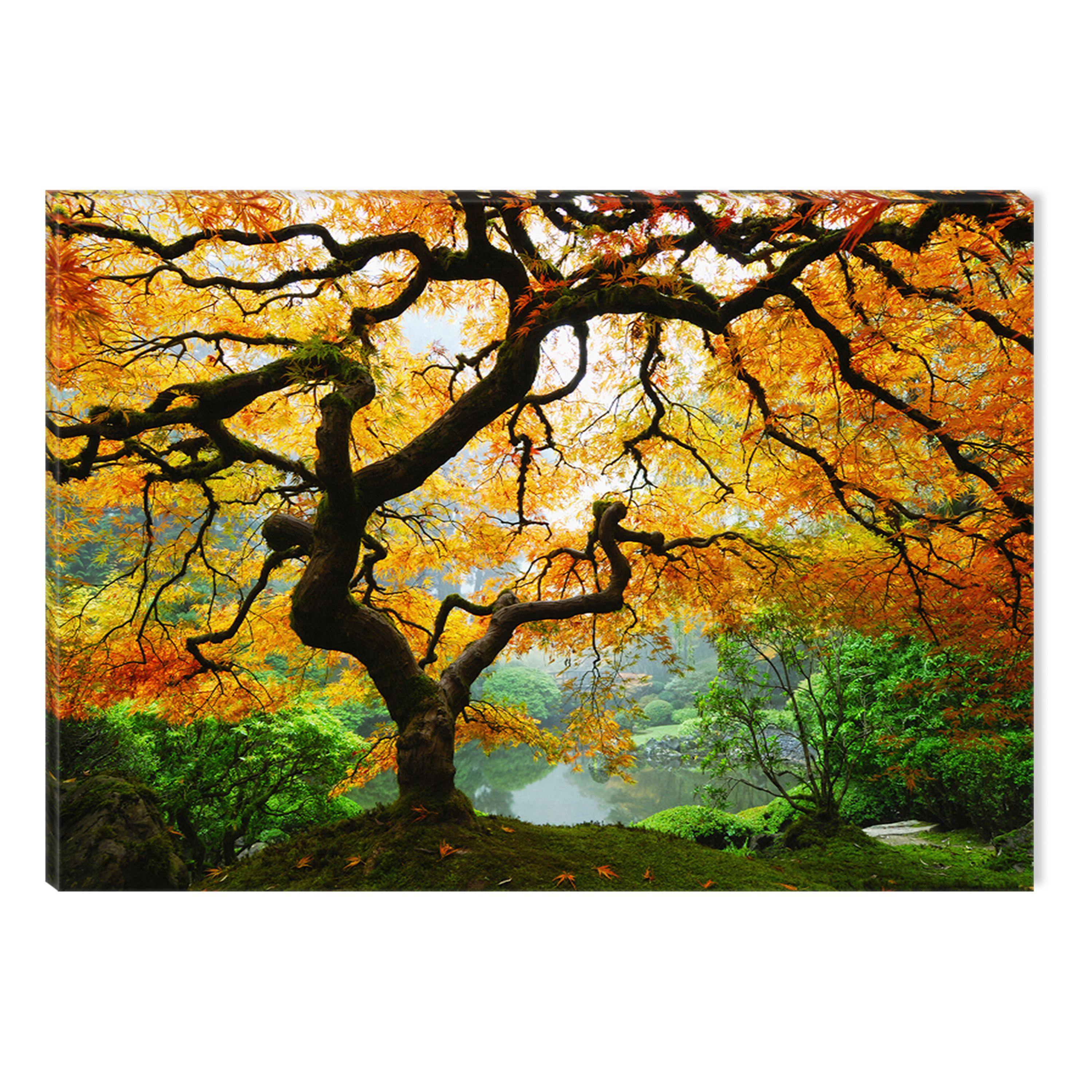 Startonight Canvas Wall Art Maple Tree USA Design for Home Decor, Illuminated Nature Painting Modern Canvas Artwork Framed Ready to Hang Medium 23.62 X 35.43 inch