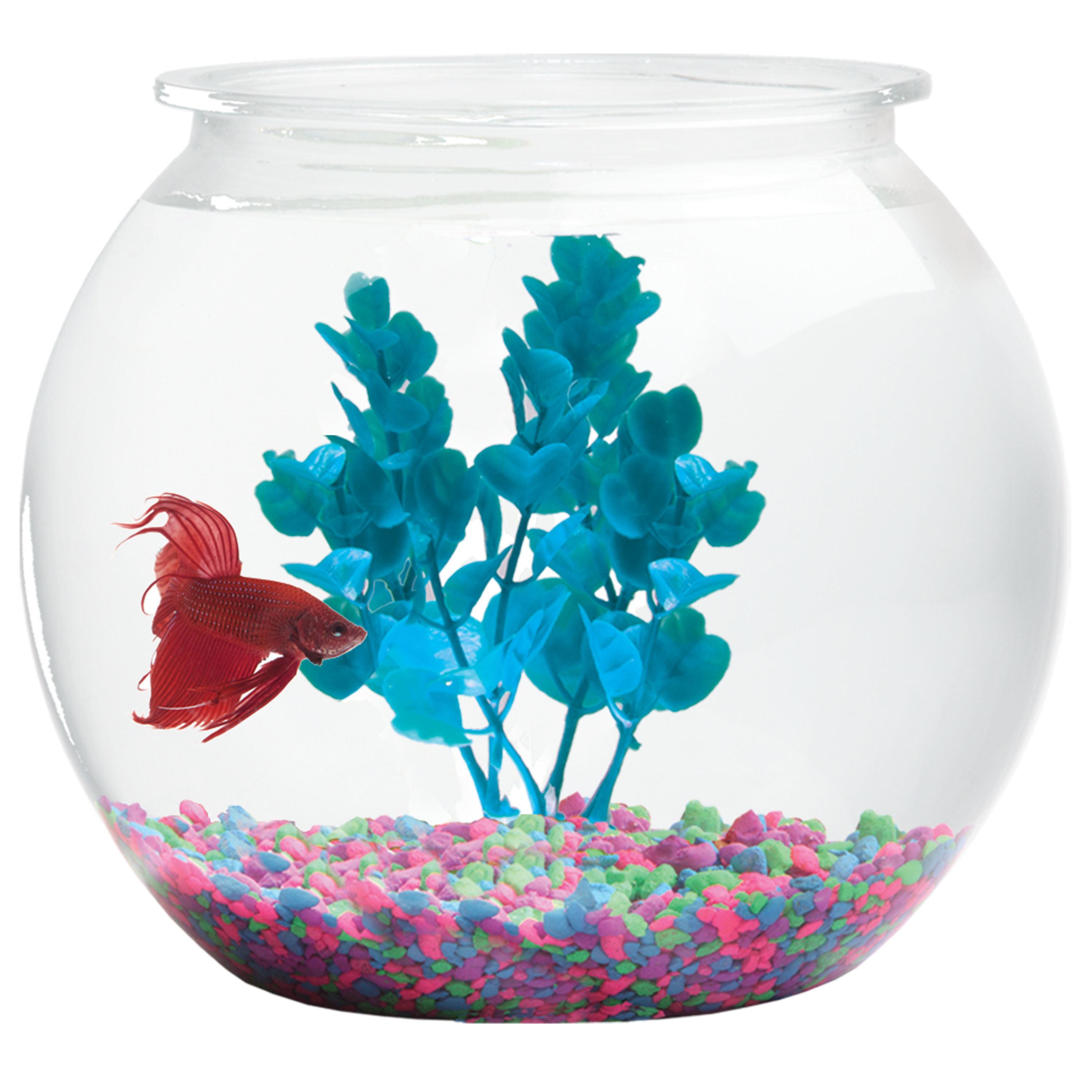 Hawkeye 3-Gallon Bubble Shaped Fish Bowl