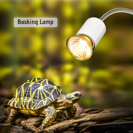 25W Halogen Heat Lamp UVA UVB Basking Lamp Heater Light Bulb for Reptiles Lizard Turtle (Hagen Reptile Lamp)