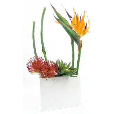 Creative Branch Birds of Paradise for Your Space Protea/Succulent Floral Arrangement in Planter