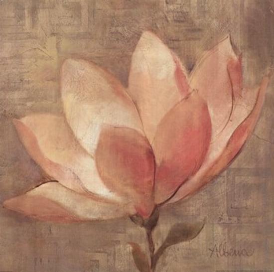 Sweet Magnolia Poster Print by Albena Hristova (18 x 18)