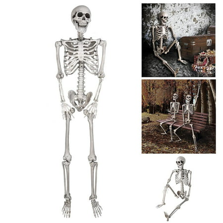 Halloween Decorations Animated Props (5ft Full Body Skeleton Props with Movable Joints for Halloween Party)