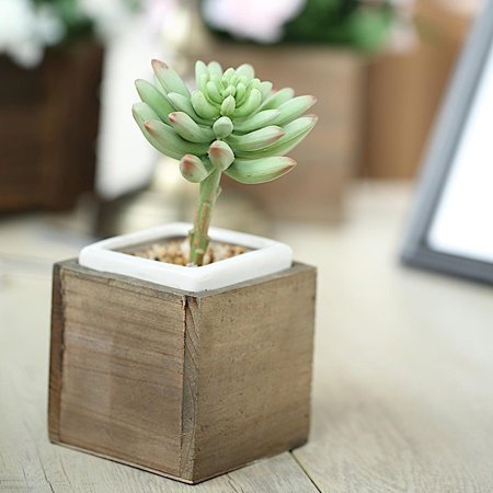 BalsaCircle 2 pcs 4-Inch Brown Wood Rustic Square Boxes Planter Holders Centerpieces - Wedding Party Supplies Crafts Decorations ()