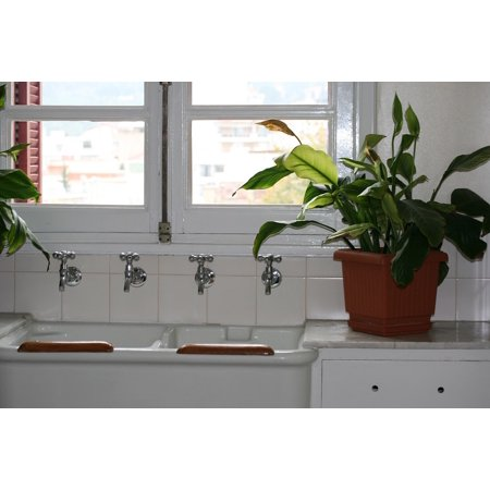 Framed Art For Your Wall Cranes Potted Plant Green Kitchen Sink White Metal 10x13 (Metal Sink Frame)