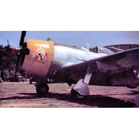 (LAMINATED POSTER 394th Fighter Squadron P-47D Thunderbolt 1945 Poster Print 24 x 36)