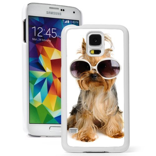 Samsung Galaxy (S5 Active) Hard Back Case Cover Cute Yorkie Dog Wearing Glasses (White)