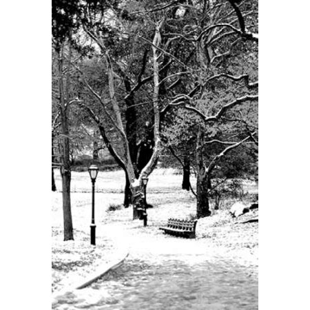- Central Park Snowy Scene Poster Print by Jace Grey