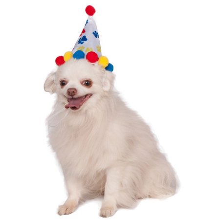 Halloween Pet Paw Print Birthday Hat