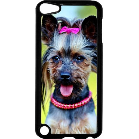 Yorkie Girl   - Hard Black Plastic Case Compatible with the Apple iPod Touch 5th Generation - iTouch 5 Universal ()