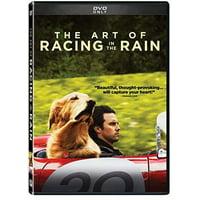 The Art of Racing in the Rain (DVD)