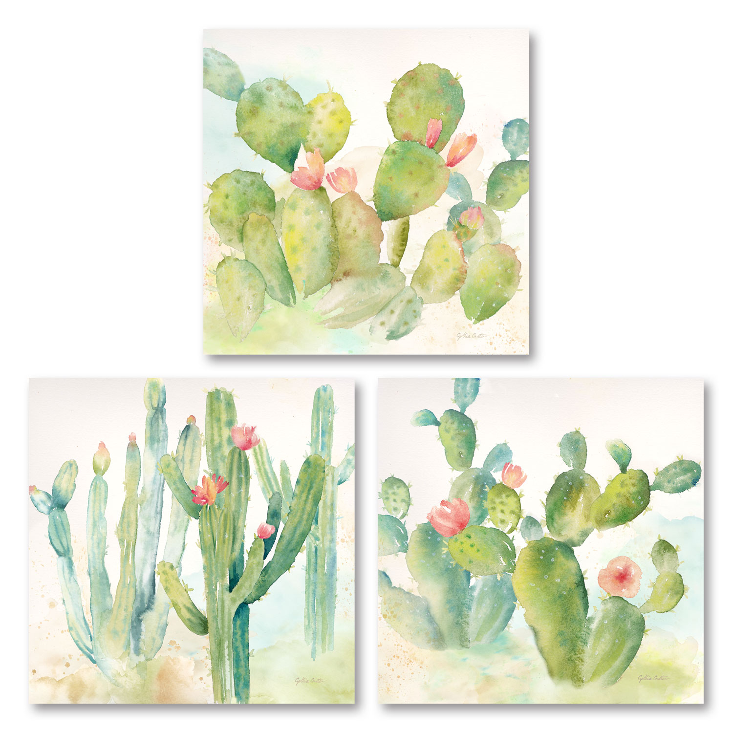 Lovely Watercolor-Style Desert Cactus Print Set by Cynthia Coulter; Three 12x12in Unframed Paper Posters