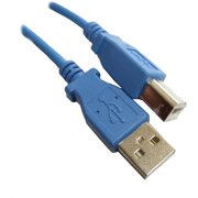 Professional Cable USB 2.0 Printer Cable, 6', Blue
