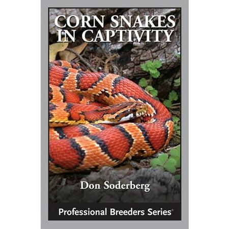 Corn Shape - Corn Snakes in Captivity - eBook