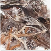Creativity Street, CKC4514, Natural Feathers, 1 Pack, Natural