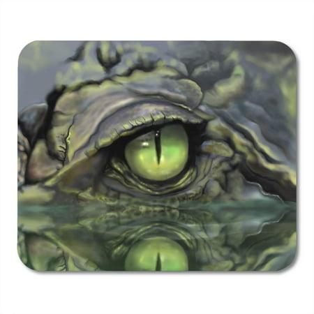 LADDKE Green Alligator Drawing of Crocodile Eye Brown Skin Lizard Mousepad Mouse Pad Mouse Mat 9x10 inch ()