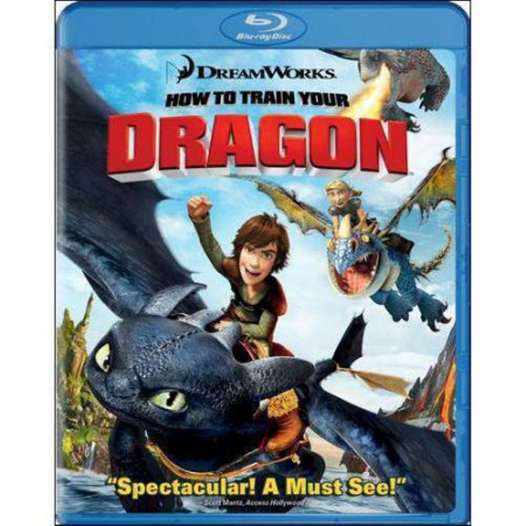 20th Century Fox How To Train Your Dragon (Blu-ray) (Widescreen) by 20th Century Fox