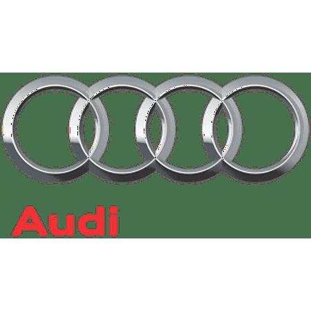 Genuine OE Audi Fuel Pump 079-127-025-AF