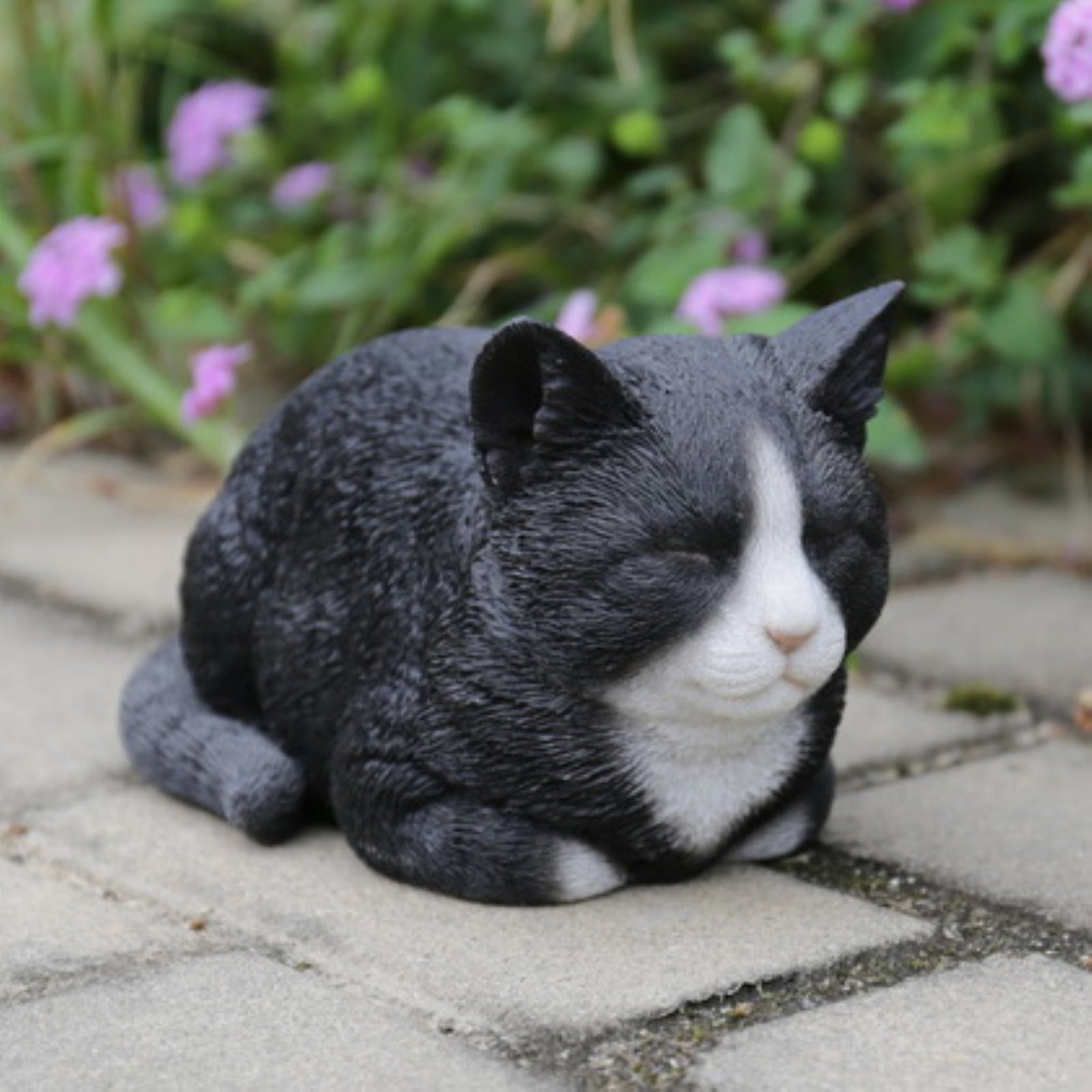 BLACK/WHITE CAT SLEEPING