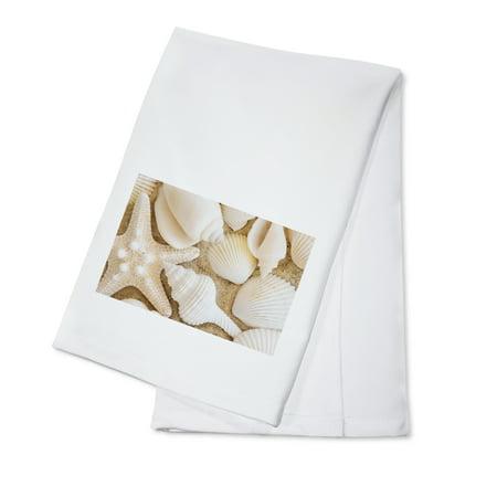 Seashells - Lantern Press Photography (100% Cotton Kitchen Towel)