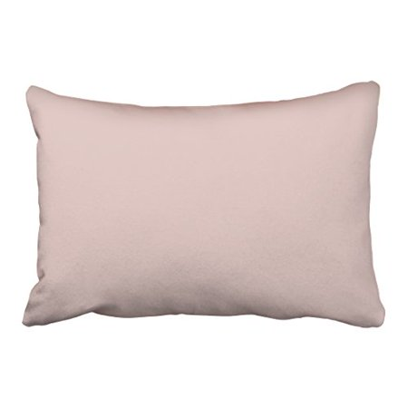 WinHome Decorative Decors Blush Peachy Light Pink Solid Color Background Throw Pillow Case Cushion Cover Home Sofa Decorative Pillows Size 20x30 inches Two