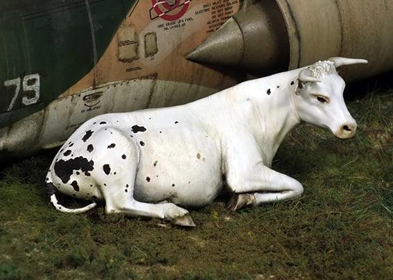 Royal Model 1:35 Cow Lying Down Resin Figure Kit #748 by RoyalModel