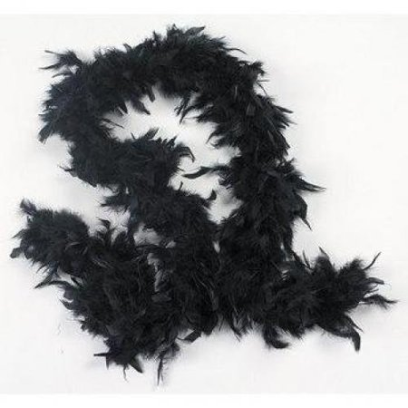 Fun Express - Black Feather Boa - Apparel Accessories - Costume Accessories - Costume Props - 1 Piece (Black Boa Feathers)