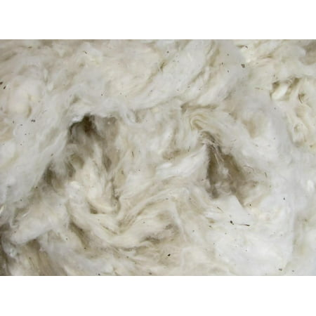 Trim Organic Cotton - Organic Raw Cotton Fiber - Natural Color - 1 Pound