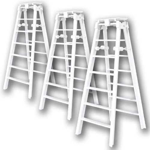 WWE Folding Ladder