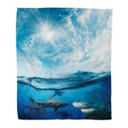 KDAGR Throw Blanket Warm Cozy Print Flannel Blue Beautiful Cloudy Divine with Sunlight and Lot of Dangerous Sharks Green Comfortable Soft for Bed Sofa and Couch 50x60 Inches