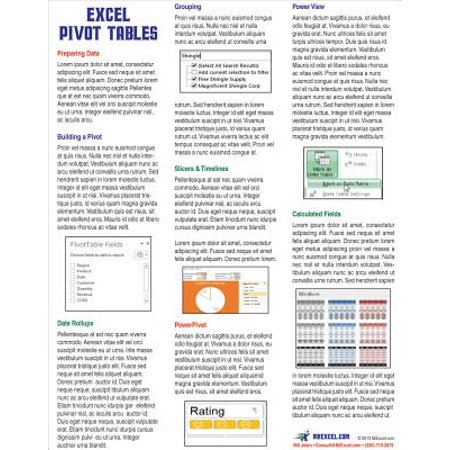 Excel Pivot Tables Laminated Tip Card : Pivot Table Tricks from MrExcel (Laminated Tips)