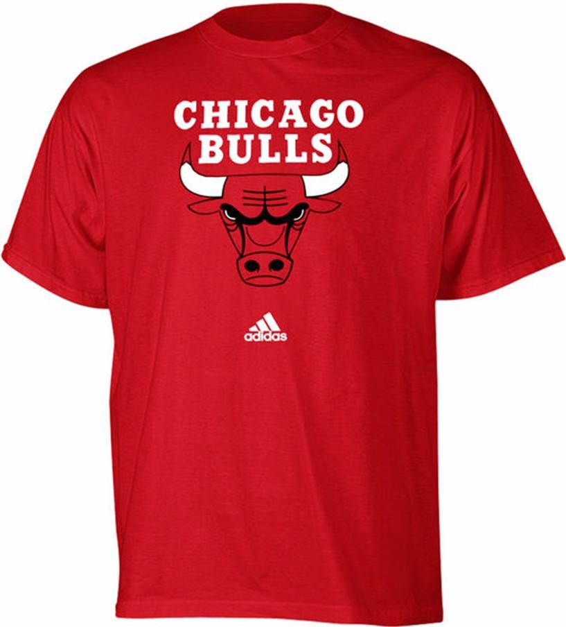 Chicago Bulls Kids T-Shirt Primary Logo