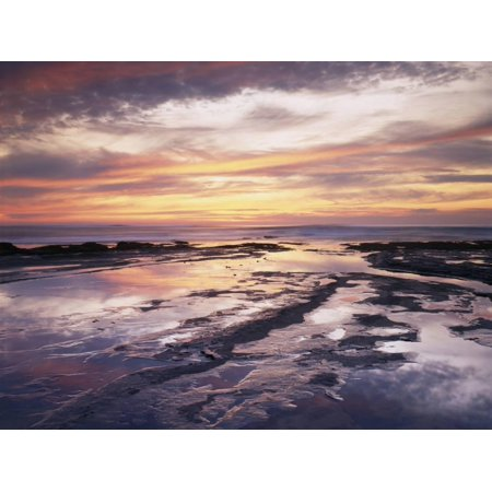 California, San Diego, Sunset Cliffs, Sunset Reflecting in Tide Pools Print Wall Art By Christopher Talbot Frank