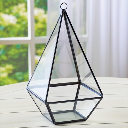 Geometric Glass Teardrop Terrarium with Black Metal Frame Tabletop Display, Open Front for Easy
