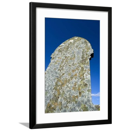 Halloween Wall Coverings Uk (Lichens Covering a Gravestone, St. Madoc's Churchyard, Llanmadoc, Gower, S.Wales, Uk Framed Print Wall)