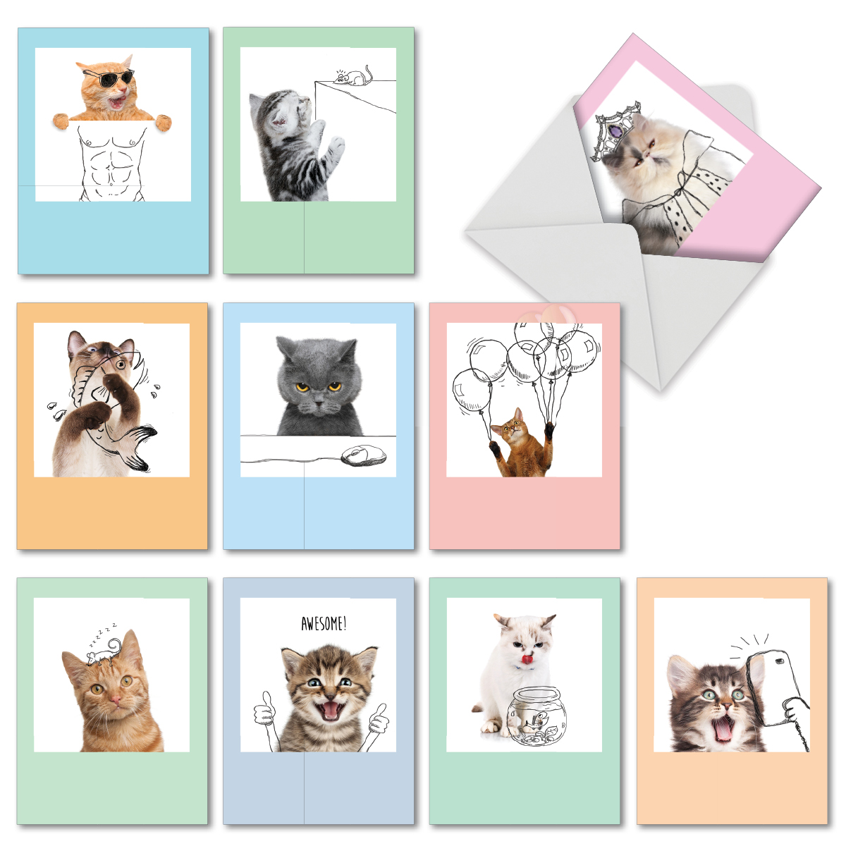 Tags Portable Label Animal,Cat Portrait Kitty Whiskers Animal Cartoon