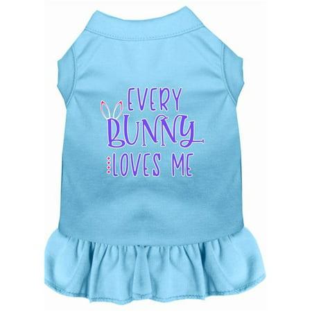 Every Bunny Loves me Screen Print Dog Dress Baby Blue Sm (Love Dog Dress)