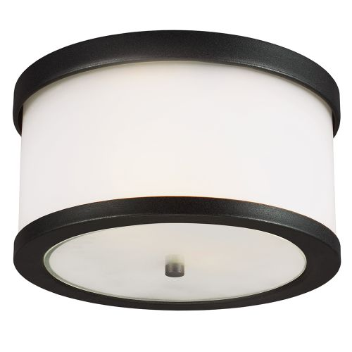 Sea Gull Lighting 7822402 Bucktown 2 Light Outdoor Flush Mount Ceiling Fixture