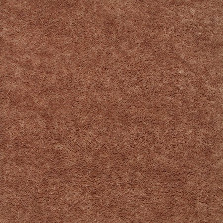 Home Queen Solid Color Brown 8