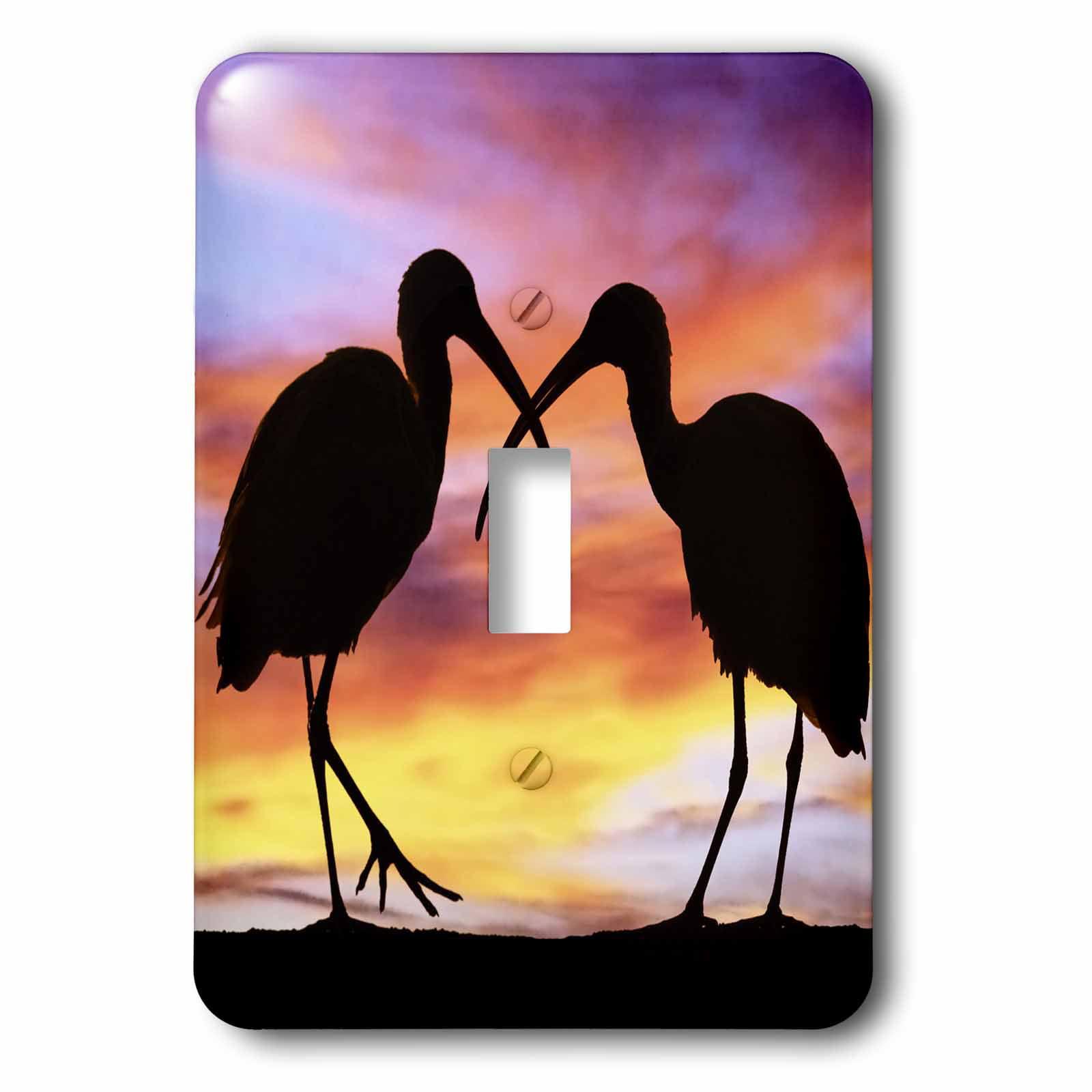 3dRose Florida, Mt. Dora, ibis bird silhouettes - US10 DSN0012 - Deborah Sandidge, Double Toggle Switch