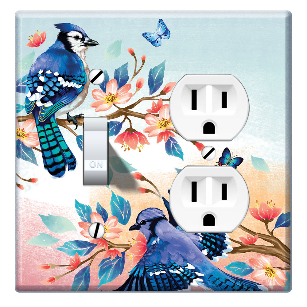 Wirester Double 1 Gang Toggle Light And 1 Gang Duplex Outlet Switch Plate Wall Plate Cover Blue Jay Birds Walmart Com Walmart Com