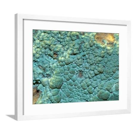 Malachite Art (Malachite, an Ore of Copper Framed Print Wall Art By Scientifica)