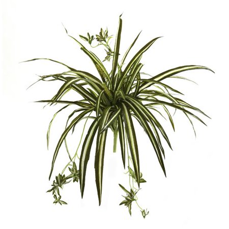 Flowering Gift Set - Nearly Natural Spider Flowering Plant (Set of 4)